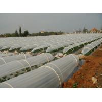Найлон за оранжерии - вторичен - за тунели за разсад - дебелина 100 микрона