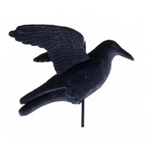 Гарван в естествен размер - плашило срещу гълъби, врабчета, малки птици