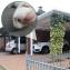 Електронен ултразвуков светодиоден Guard Zone  срещу кучета, котки, плъхове, диви животни